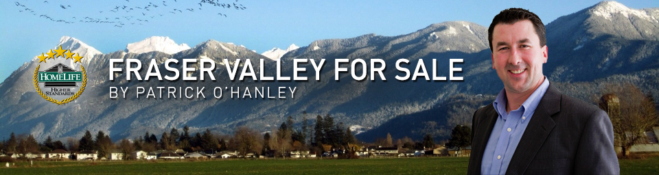 fraser valley for sale langley abbotsford chilliwack real estate testimonials